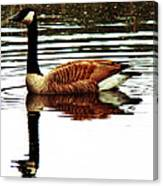Mirrored Goose Canvas Print