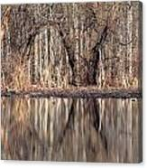 Mirrored Opening Canvas Print