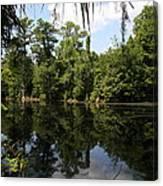 Mirrow Lake - Magnolia Gardens Canvas Print