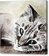 Miss Lilly Canvas Print
