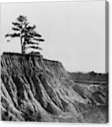 Mississippi Erosion, 1936 Canvas Print