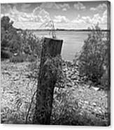 Mississippi River - Bw Canvas Print