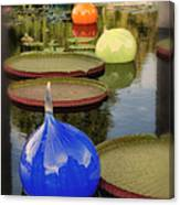 Missouri Botanical Garden Six Glass Spheres And Lilly Pads Img 2464 Canvas Print