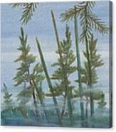 Mist In The Marsh Canvas Print