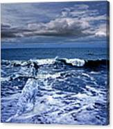 Mister Kallinski And The Sea Canvas Print