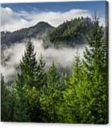 Mists Among The Hills Canvas Print