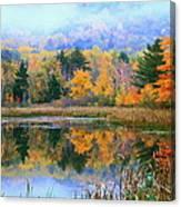 Misty Autumn Pond  Canvas Print