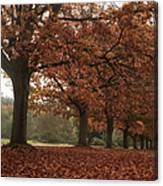 Misty Colours Of Autumn Canvas Print