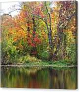 Misty Fall Canvas Print