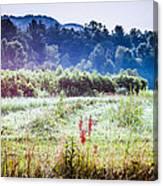 Misty Field In Blue Ridge Mountain Farmlands Canvas Print