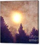 Misty Forest Sunrise Canvas Print