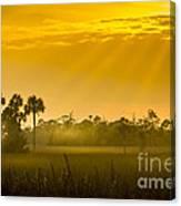Misty Glade Canvas Print