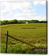 Misty Hills Farm Canvas Print