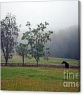 Misty Morning At The Farm Canvas Print