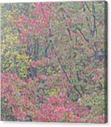 Misty Morning Foliage Canvas Print
