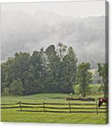 Misty Morning Ride Canvas Print