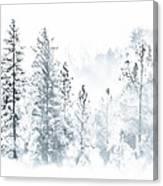 Misty Mountain Canvas Print