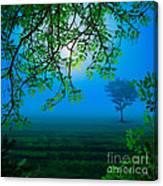Misty Night Canvas Print
