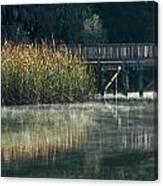 Misty Pond Canvas Print