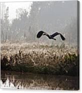 Misty Takeoff Canvas Print