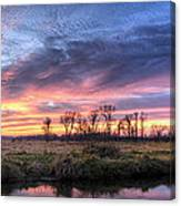 Mitchell Park Sunset Panorama Canvas Print