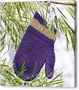 Mitten In Snowy Pine Tree Canvas Print
