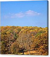 Mixed Fall Canvas Print