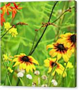 Mixed Flowers Bloom In A Garden Canvas Print
