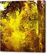 Yellow Forest Canvas Print