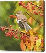 Mockingbird And Berries Canvas Print