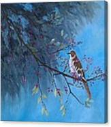 Mockingbird Happiness Canvas Print