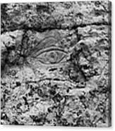 Modern Hieroglyphics Viii Canvas Print