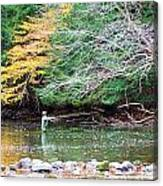 Mohican Fly Fishermen Canvas Print