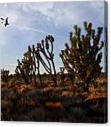 Mojave Desert Joshua Tree With Ravens Canvas Print
