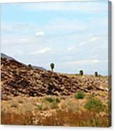 Mojave Desert Landscape Canvas Print