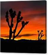 Mojave Morning Canvas Print