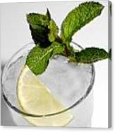 Mojito Detail Canvas Print