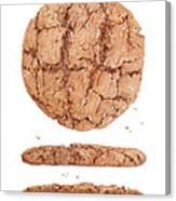 Molasses Cookie Canvas Print