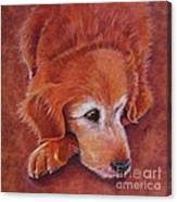 Mollie Canvas Print