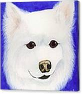 Molly The American Eskimo Dog Canvas Print