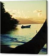 Molokai Beach Canvas Print