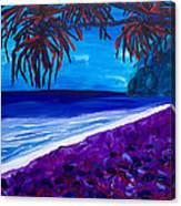 Moloka'i Canvas Print