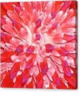 Molokai Bromeliad Canvas Print