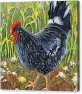 Mom And Chicks Canvas Print