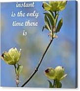 Moment In Time Canvas Print