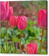Mom's Spring  Canvas Print