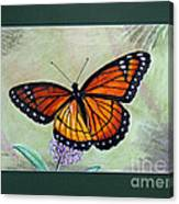 Viceroy Butterfly By George Wood Canvas Print