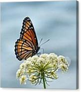 Monarch Butterfly On River Canvas Print
