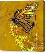 Monarch On Gold Canvas Print
