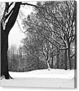 Monarch Park - 324 Canvas Print